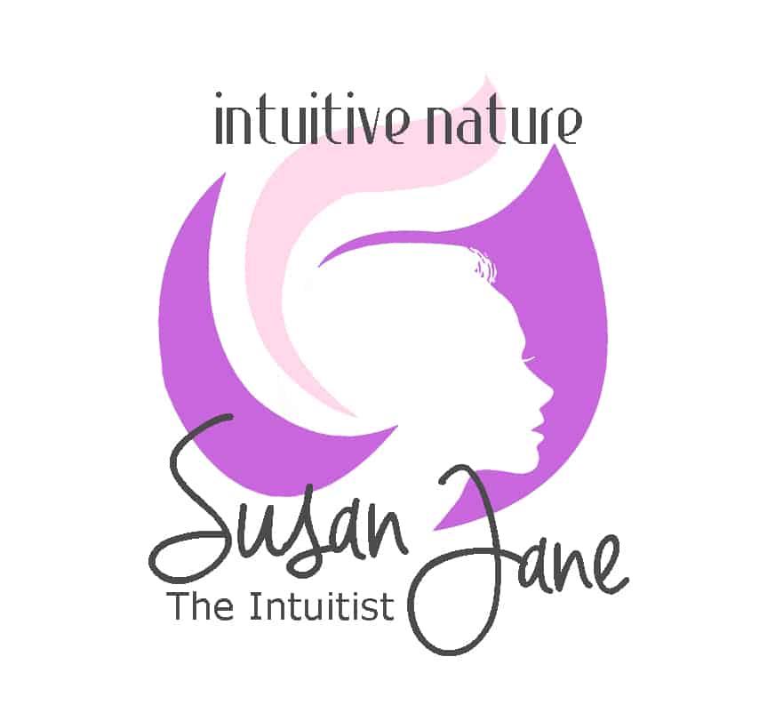Susan Jane The Intuitist