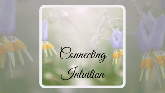 Connecting Intuition Course Image
