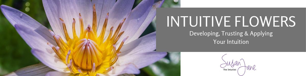 Intuition Development