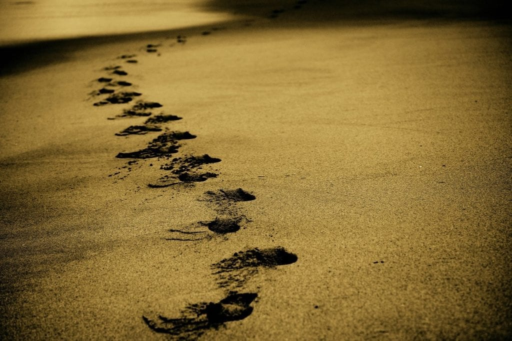 Spiritual Journey Intuitive Nature