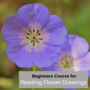 The basic for Reading Flower Images