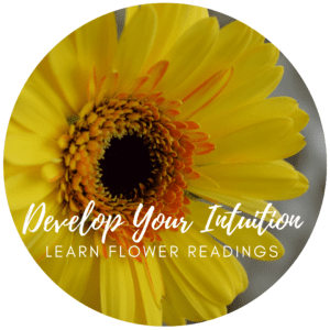 Intuitive Nature - Develop your intuition through Flower Readings