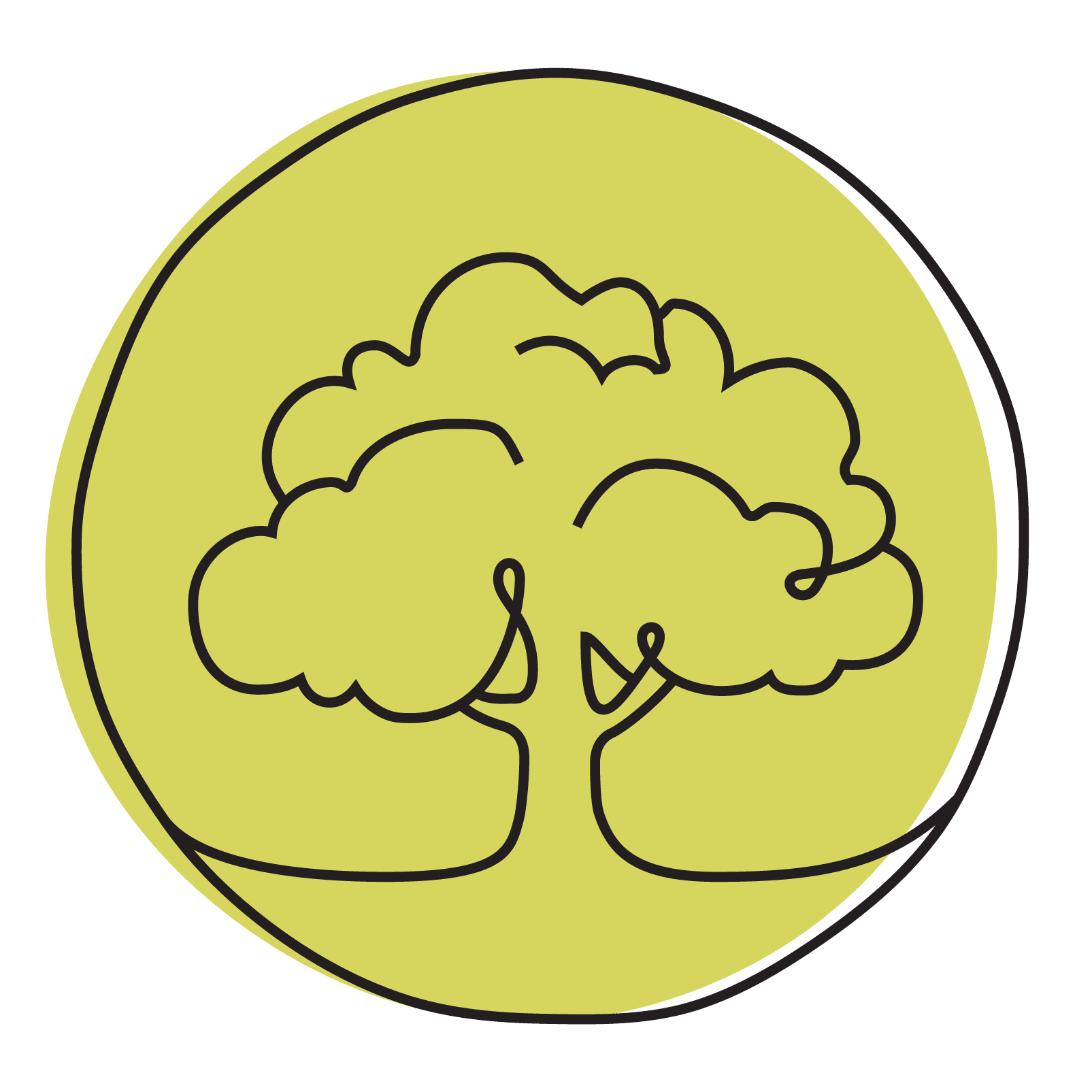 Intuitive Trees with Susan Jane